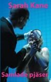 http://teatertidningen.se/wp-content/uploads/kane_oms-e1355346301431.jpg